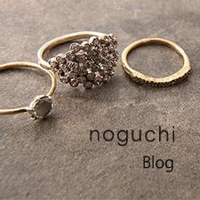 noguchi ノグチ